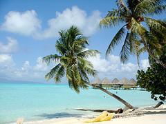 life vacation beach